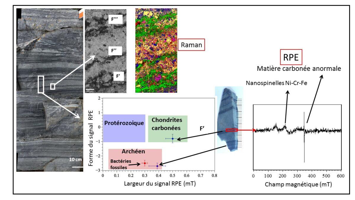 De la matière organique extraterrestre trouvée dans des sédiments marins vieux de 3,3 milliards d'années.